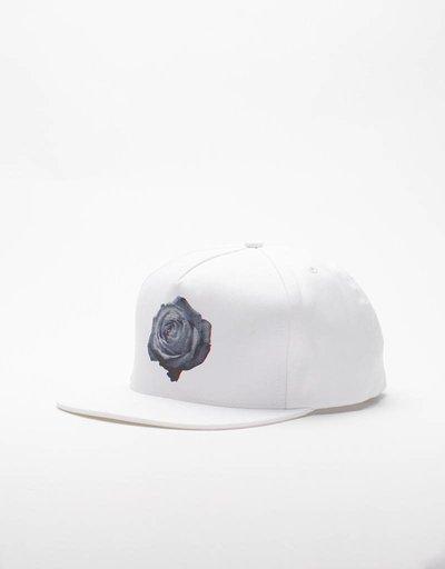 DQM Rose Fivepanel Cap White