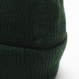 Quasi Low Embroidered Beanie Forest