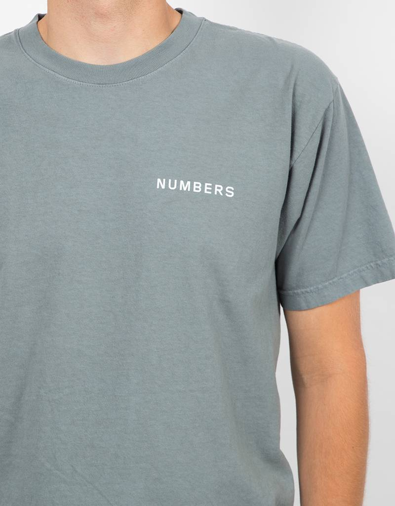 Numbers 12:45 Angel T-Shirt Sage