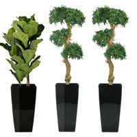 Onderhouden kunstplanten