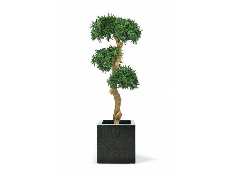 Kunstplant Podocarpus Bonsai 1.40m