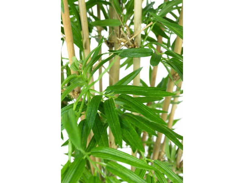 Kunstplant Japanse Bamboe 1.10m