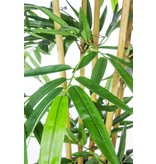 Kunstplant Bamboe 3.00m