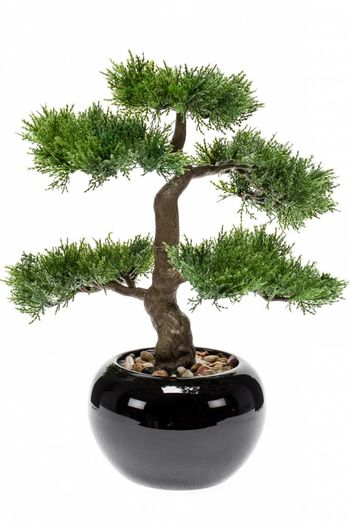 Kunstplant bonsai Cedar 34cm in pot