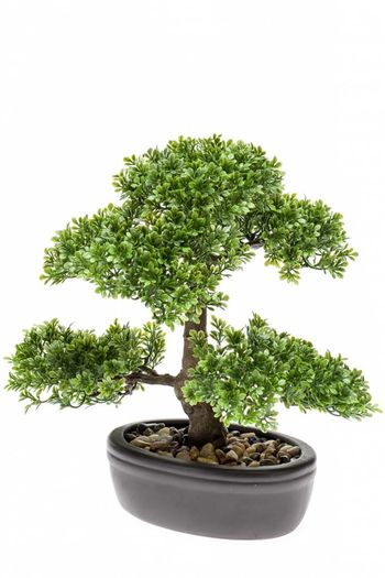 Kunstplant bonsai Ficus 32cm in pot