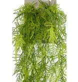 Kunstplant Asparagus hangplant 80cm
