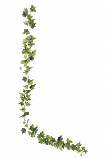 Kunstplant klimop slinger Garland 180cm