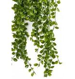 Kunst Hangplant Ficus Pumila 80cm