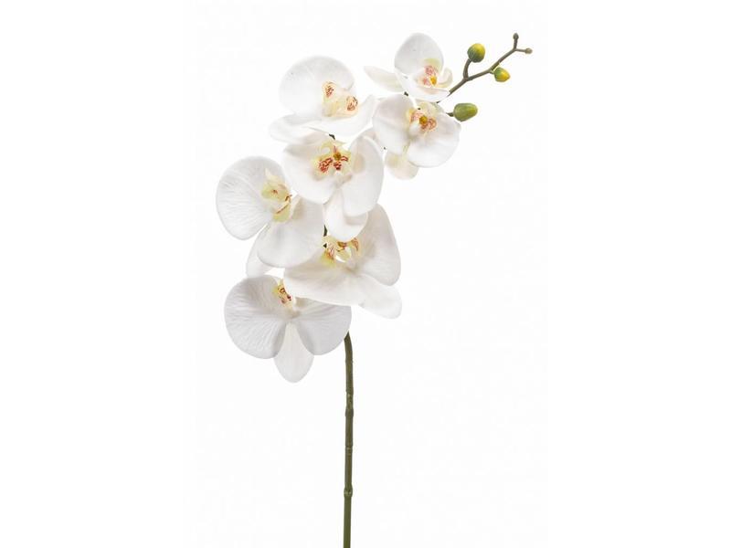 Kunst Phalaenopsis  orchidee wit 83cm