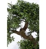 Kunst bonsai boompje 70cm