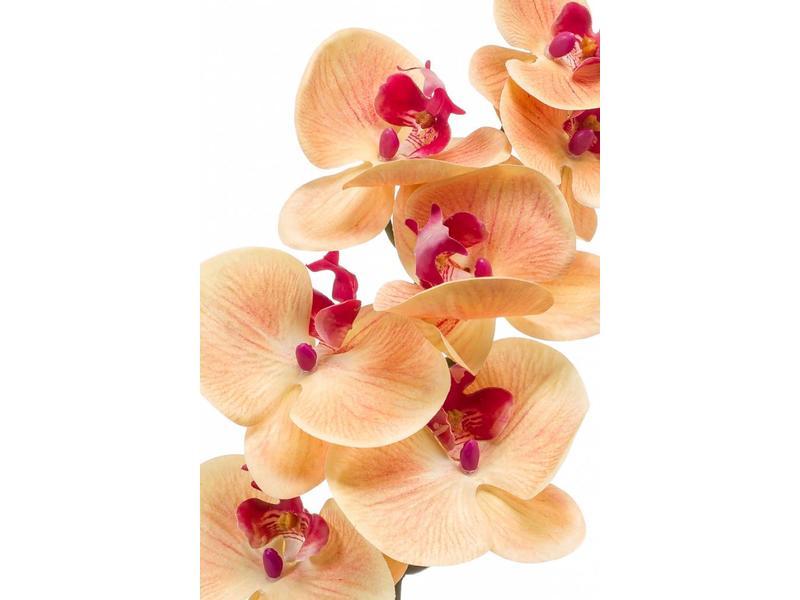 Phalaenopsis orchidee kunstbloem perzik 83cm
