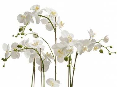 Top 3 mooiste kunstbloemen voor de lente