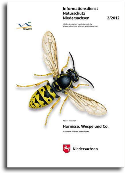 HORNISSE, WESPE UND CO. (2/12)