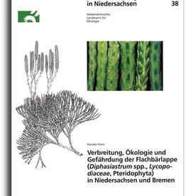 FLACHBÄRLAPPE IN NIEDERSACHSEN/HB (38)