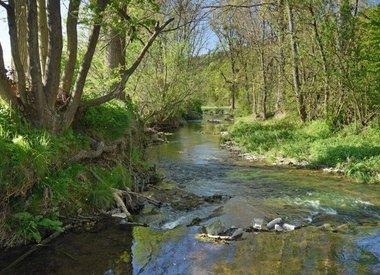 Informationsdienst Gewässerkunde/Flussgebietsmanagement