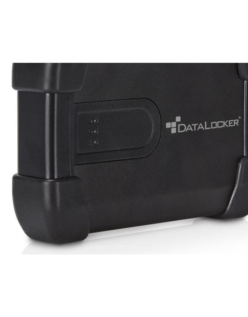 IronKey DataLocker (IronKey) H300 Basic 1TB verschlüsselte externe Festplatte