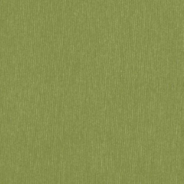 Silvertex 5019 celery