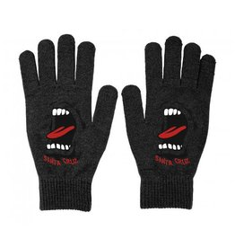 Santa Cruz Santa Cruz Gloves Screaming Black OSFA ADULT