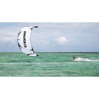 Core Free Kite White 10m (Demo)
