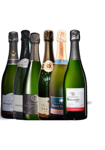 6 brut champagnes