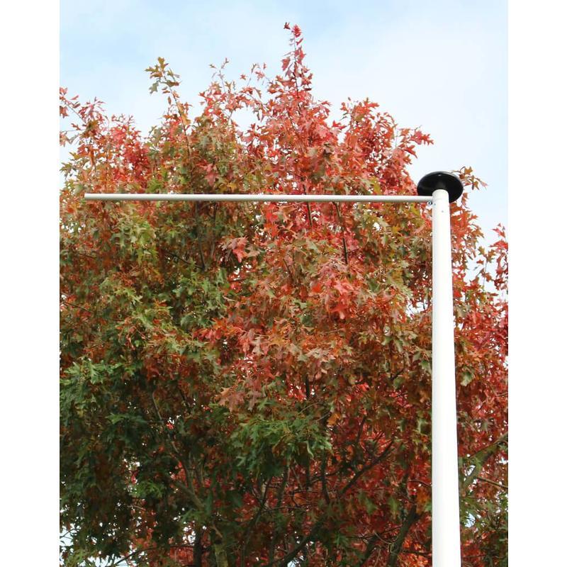 Polyester reclamemast met banierhouder, 6 meter