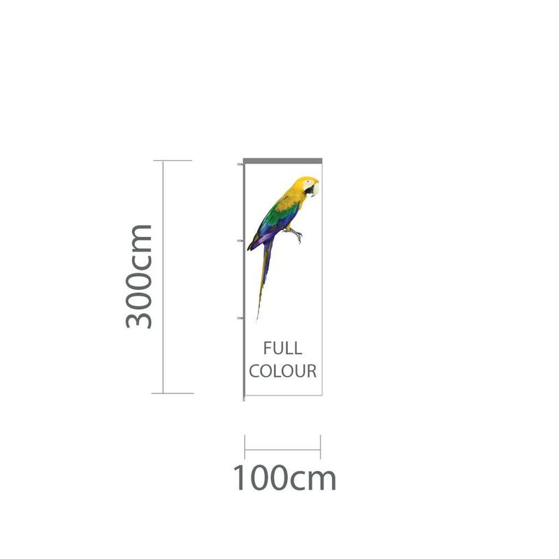 Baniervlag, full colour, 100x300cm