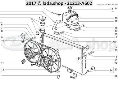 N3 Radiator and expansion tank MPFI