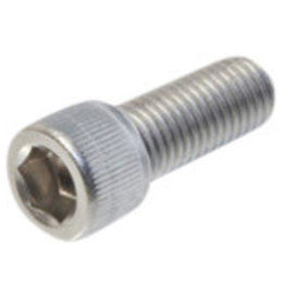 Allen bolt S/S 1/4 UNF - 28 x 1 inch