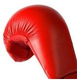 Red Karate Gloves