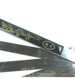 Enso Martial Arts Shop Black Metal Tai Chi Fan