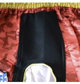 Sandee Sandee Thai Shorts Supernatural Red & Gold