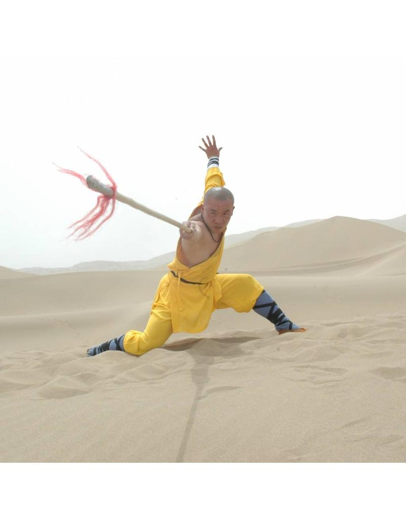 Kung Fu Spear For Shaolin Wushu And Chinese Kung Fu