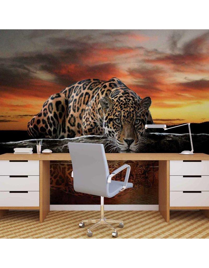 tapeten schlafzimmer ebay wohn und schlafzimmer. Black Bedroom Furniture Sets. Home Design Ideas