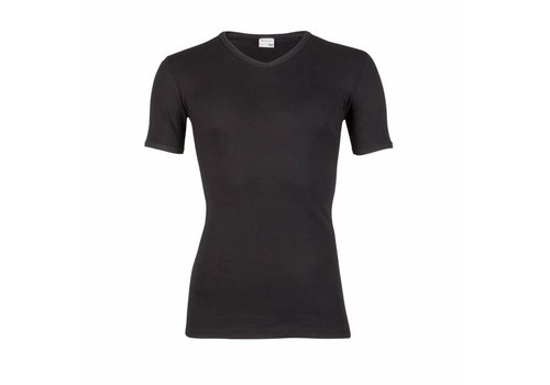 Beeren Heren T-Shirt V-Hals M3000 Zwart