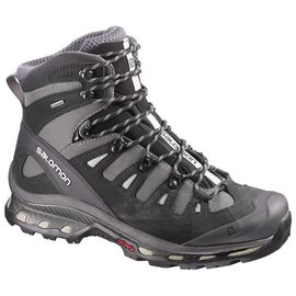 Salomon Salomon Mens Quest 4D 2 GTX (2017)