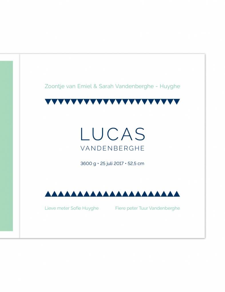 Geboortekaartje Lucas krokodil