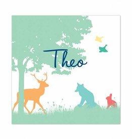 Geboortekaartje Theo