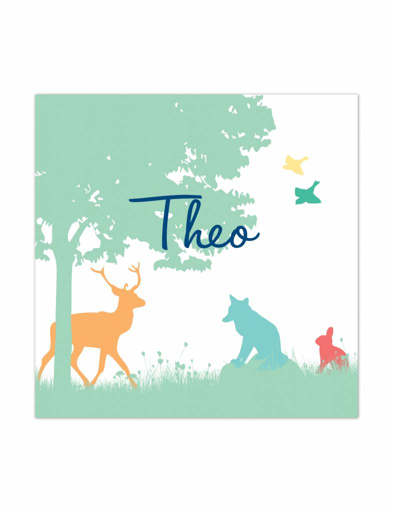 Geboortekaartje Theo natuur