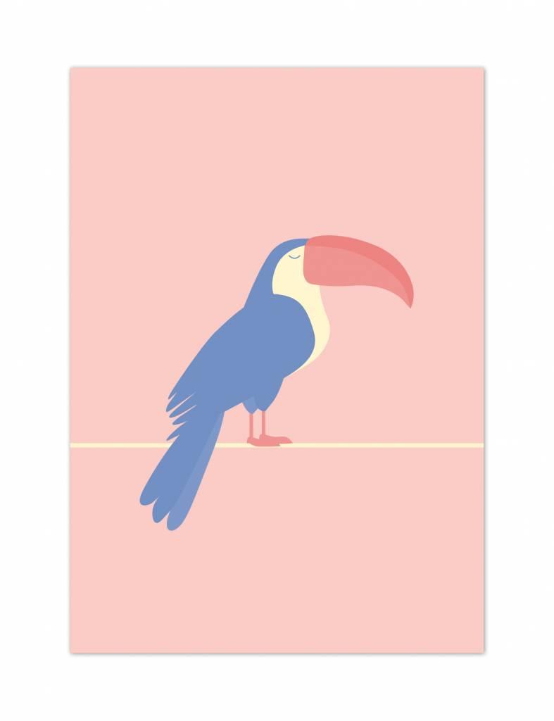 Poster - Toekan - Tropical birds
