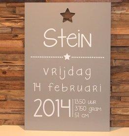 DDVM Geboortebord Stein