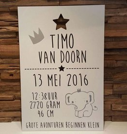 DDVM Geboortebord Timo