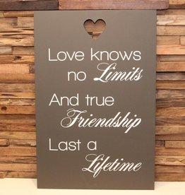 DDVM Tekstbord Love knows