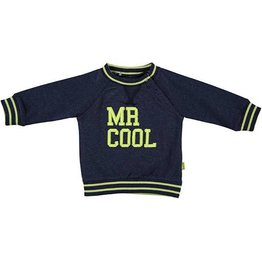 BESS Sweater Mr. Cool