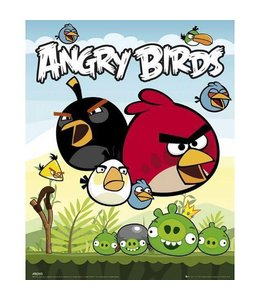 ANGRY BIRDS GROUP