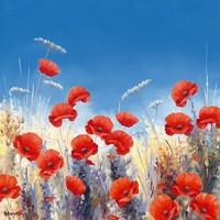 Poppy Meadow I