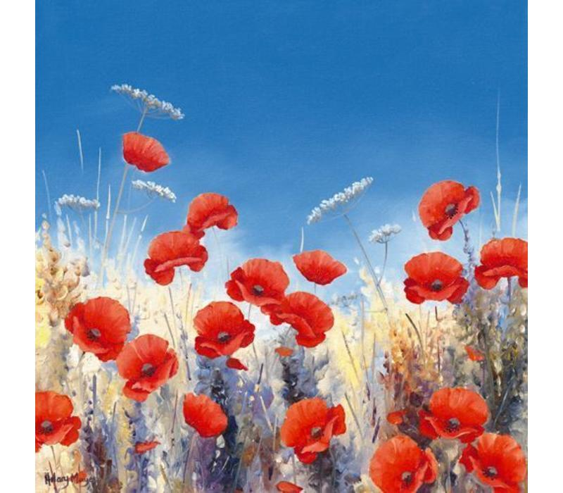 Poppy Meadow I