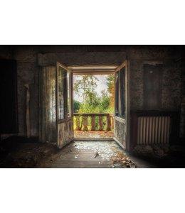 Steven Dijkshoorn Room with a view
