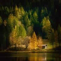 Nature Art color I
