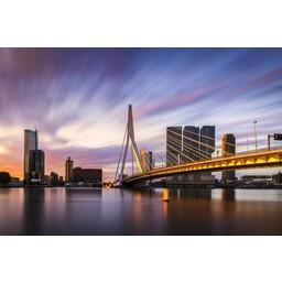 Vincent Fennis Rotterdam Strokes of Sunlight