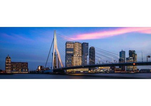 The bridge panorama